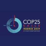 INSTITUTION - COP25